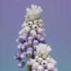Керамика РЖВ - последнее сообщение от lupiino